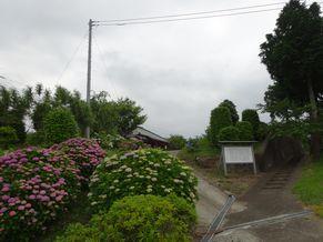 安楽寺 写真2