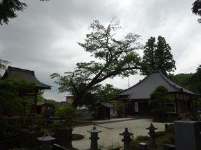 長遠寺 写真5
