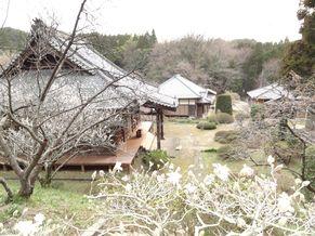 妙弘寺 写真3