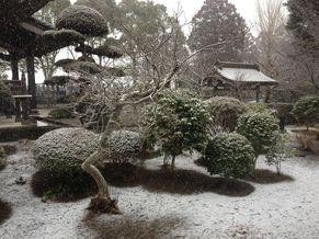 常徳寺 写真4