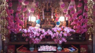 真淨寺 写真2